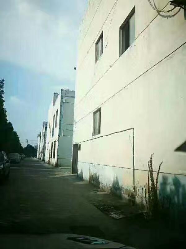 松江九亭 双层厂房出售1895平/栋 单价8500到9000元