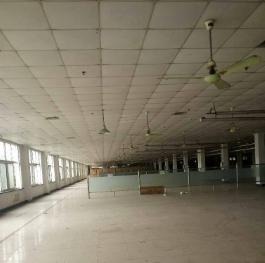 金山漕泾厂房仓库出租 1500平米主干道边上厂房出租