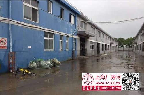 G1735 浦东六灶104地块单层双层 厂房仓库出租  1000平起租 可环评