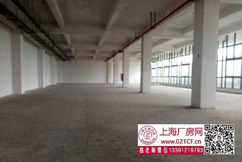 G1729 浦东 航头镇 8000平方米厂房仓库出租  100平起租 适合仓储电商 价格优惠
