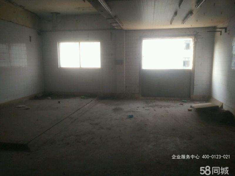 G2433南京建邺奥体 雨润大街 仓库 350平米,一楼 适合做仓库 可以加工厂 也可以分割租 也可以办公