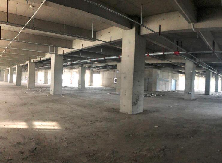 南京高淳经开区花园路 3500平方米标准厂房出租 高3.5米