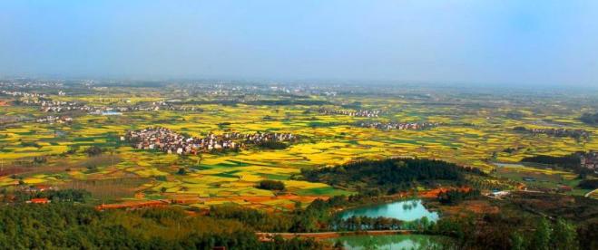 驻沪招商办组织上海企业家赴高淳考察